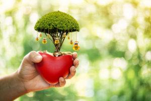 Megemelték a környezetbarát beruházásokat támogató pályázati keretet